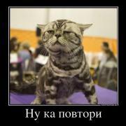 large_88769_nu-ka-povtori.jpg